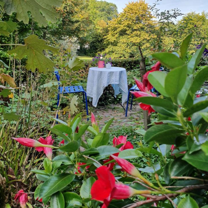 Tafeltje in de tuin van een theetuin