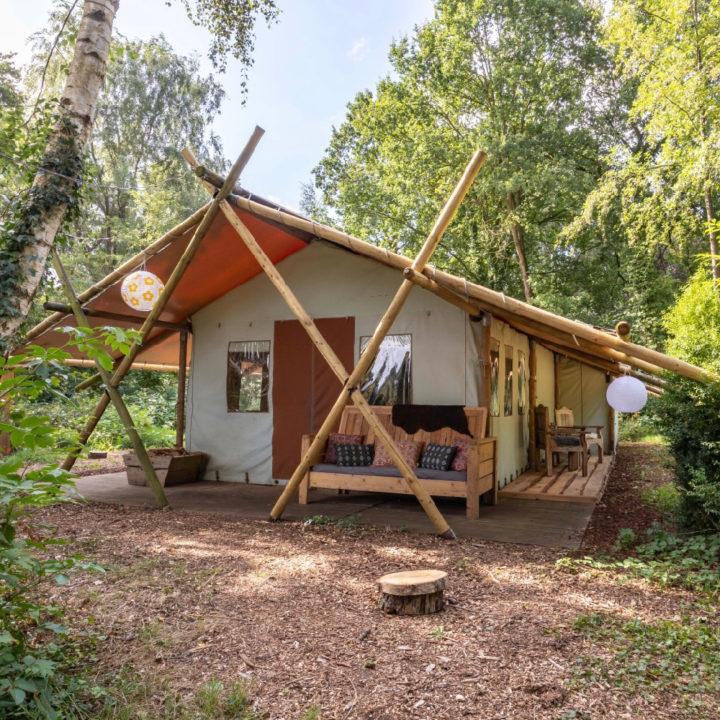 Safaritent in het bos, met overdekte veranda met bank