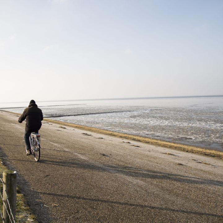 Man fiets langs de zee