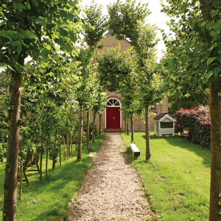 Looppaadje naar de ingang met bomen langs de kant