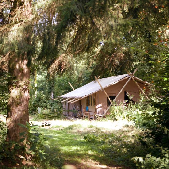 Een lodgetent met houten palen in het bos