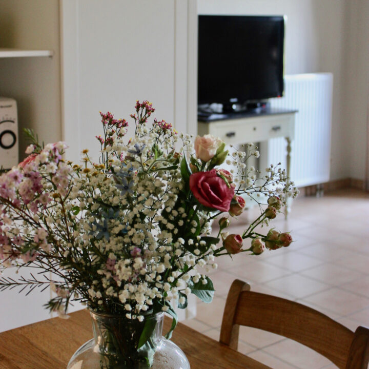 Landelijk ingerichte appartementen voor een vakantie in Zuid-Limburg