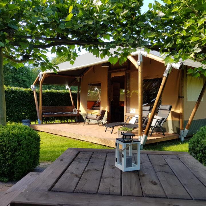 Safari lodge tent in Drenthe