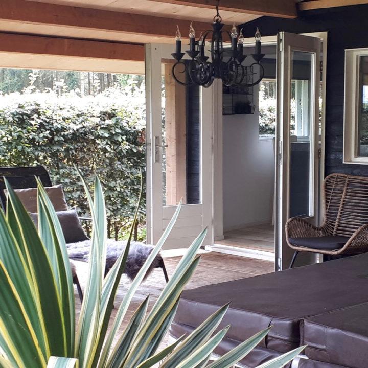 Een zicht op open deuren van het huisje met een plant op de voorgrond