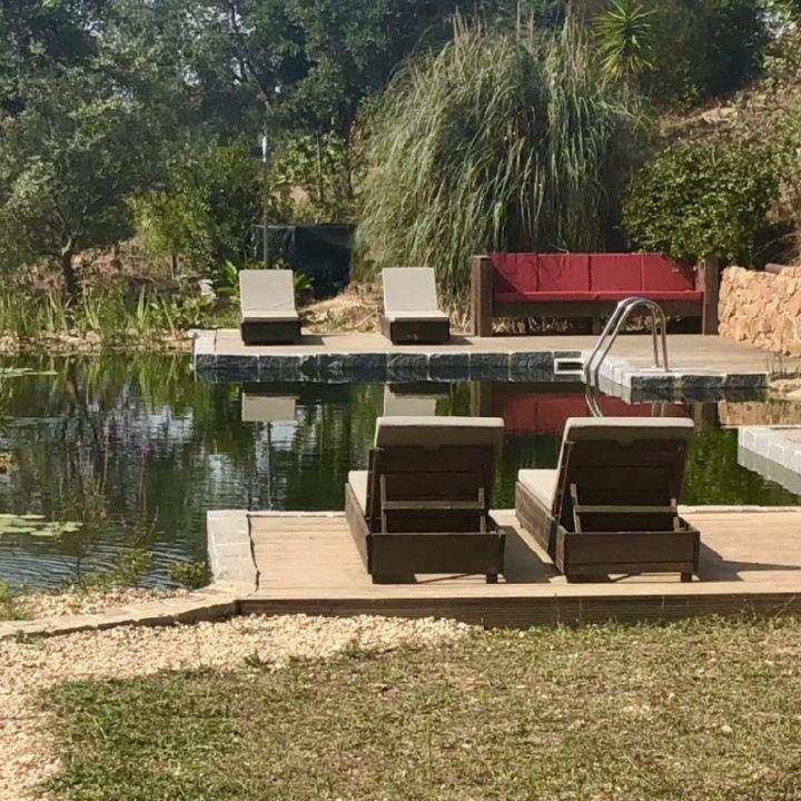 Natuurzwembad met ligstoelen en een loungebank bij Portugal Nature Lodge