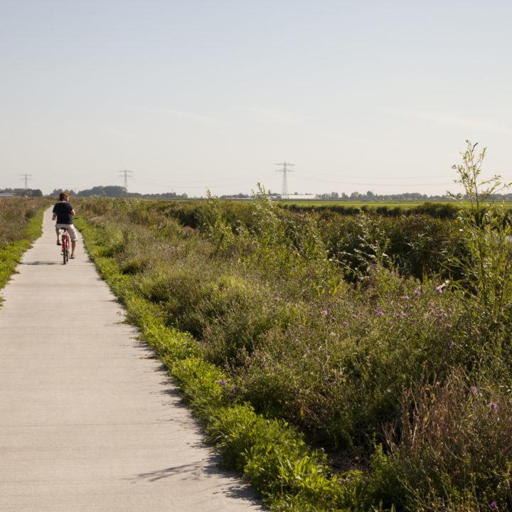 Man fiets langs een veld op een pad van asfalt