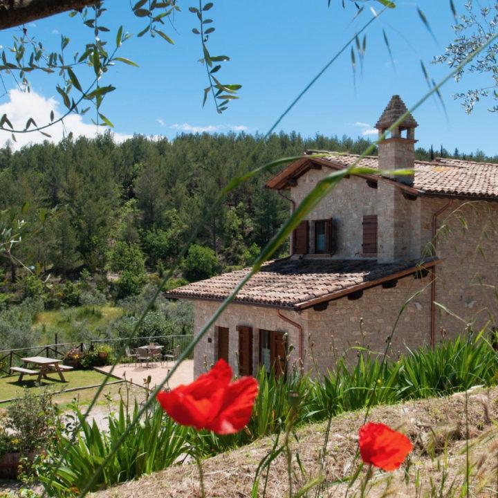 Vakantiehuis midden in de natuur