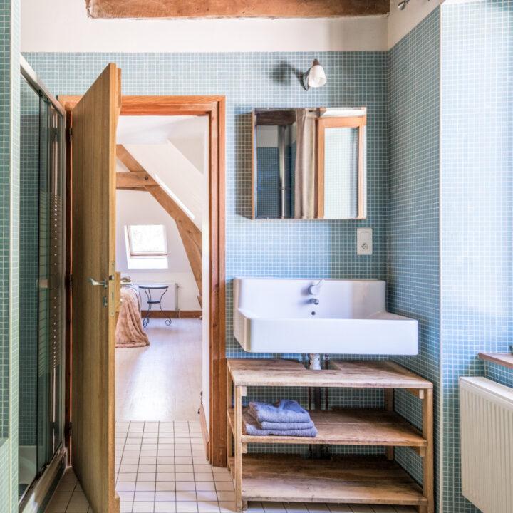 Badkamer met licht blauwe tegeltjes