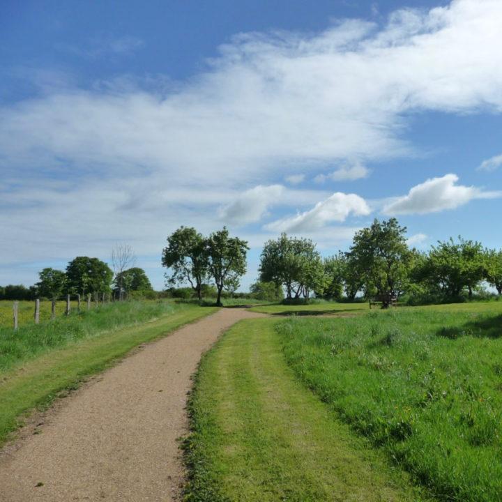 Een lange oprijlaan met aan weerszijden gras