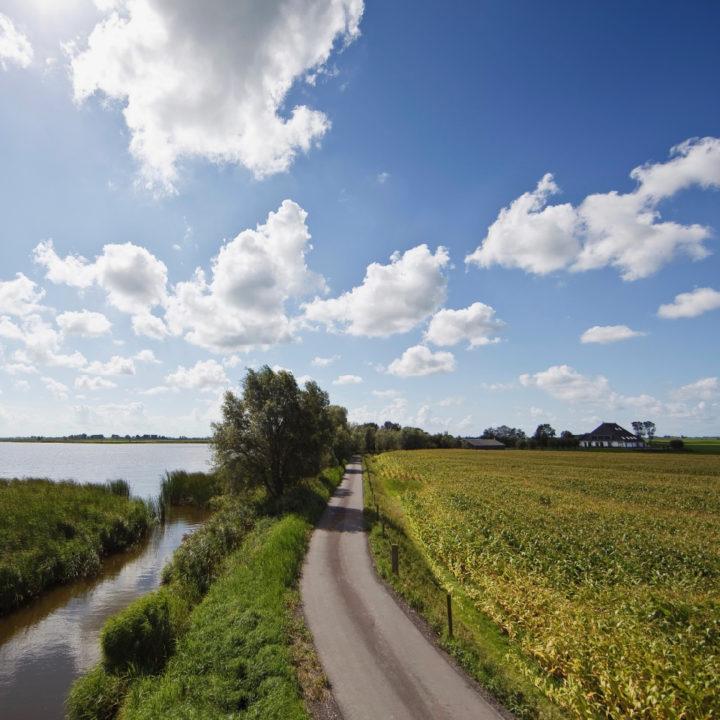 Lange oprijlaan langs meer en akker naar witte Friese boerderij