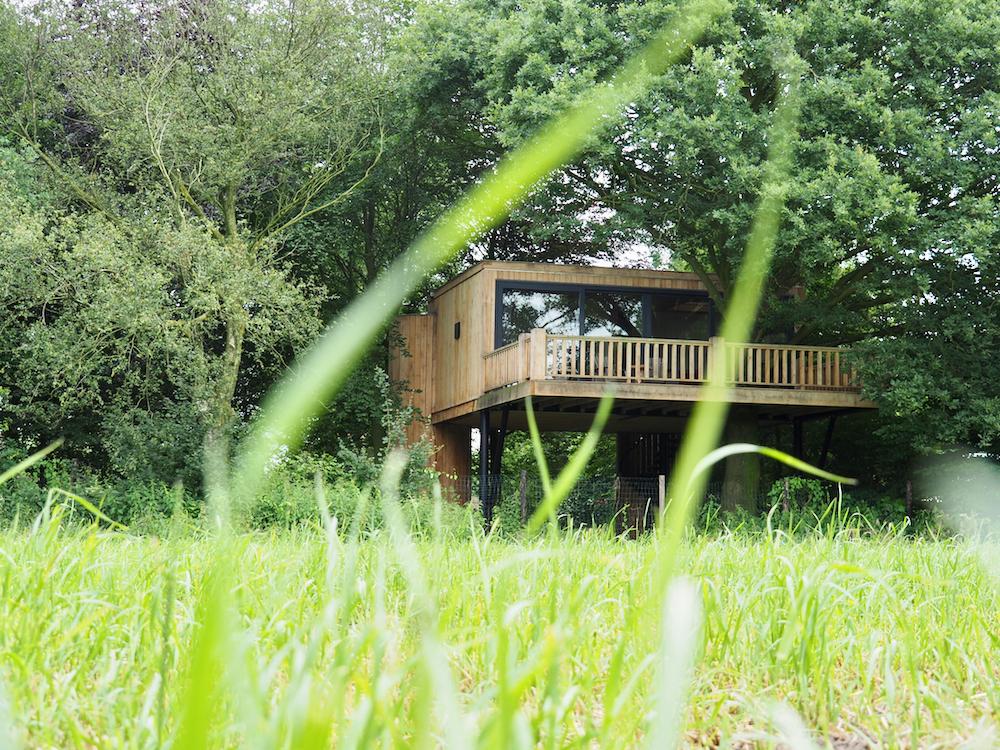 Grassprieten met tussendoor zicht op een boomhut