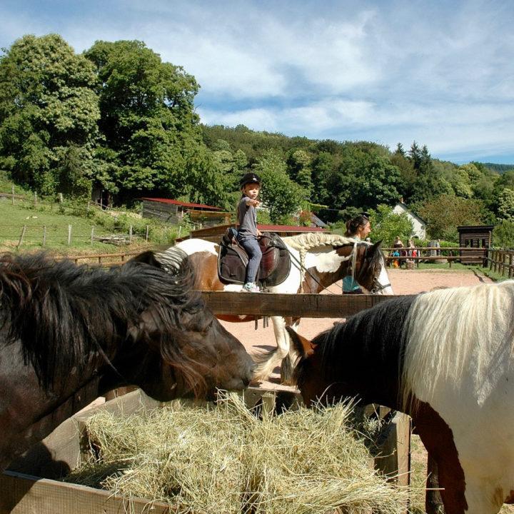 Een meisje op een paard