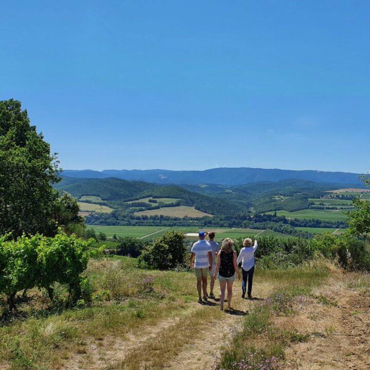 Ga mee op wijntour en proef de lokale heerlijke wijnen.