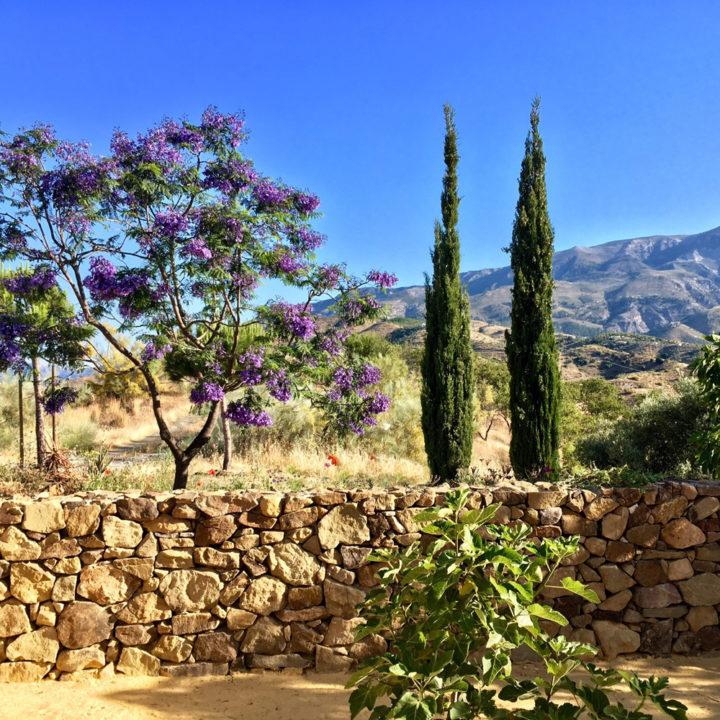 Tuin in de heuvels van Andalusië
