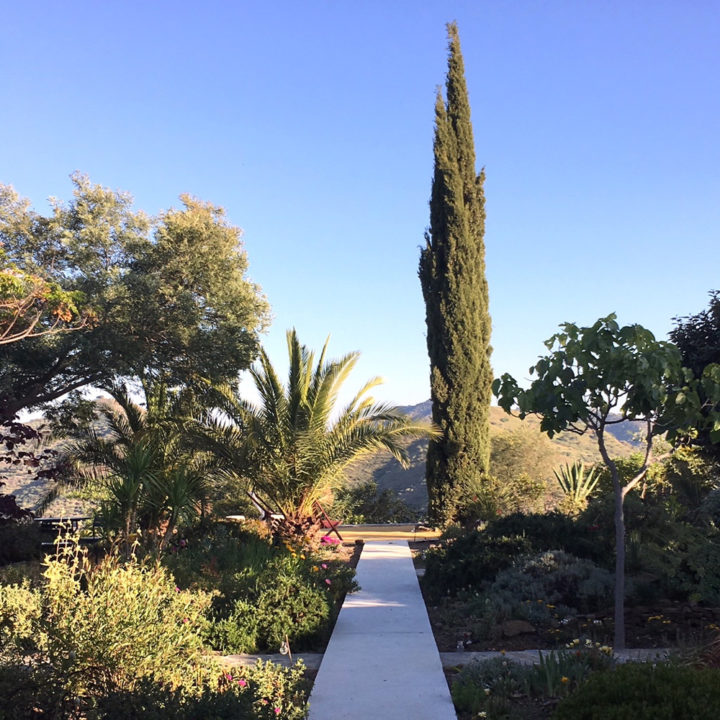 Tuin bij het vakantiehuis