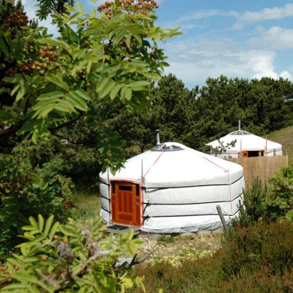 Mongoolse yurts in een duinlandschap op Texel