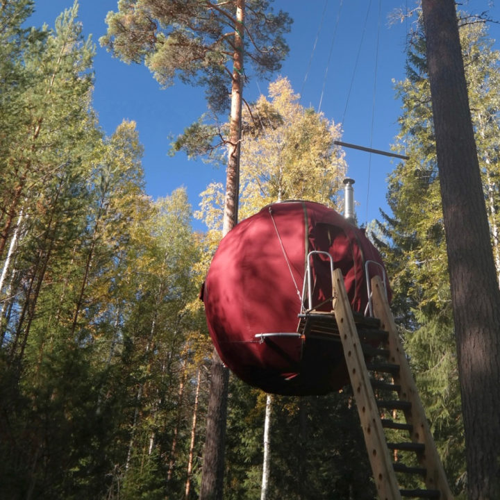 Rode ronde boomhut met trap ervoor, tussen hoge rechte bomen