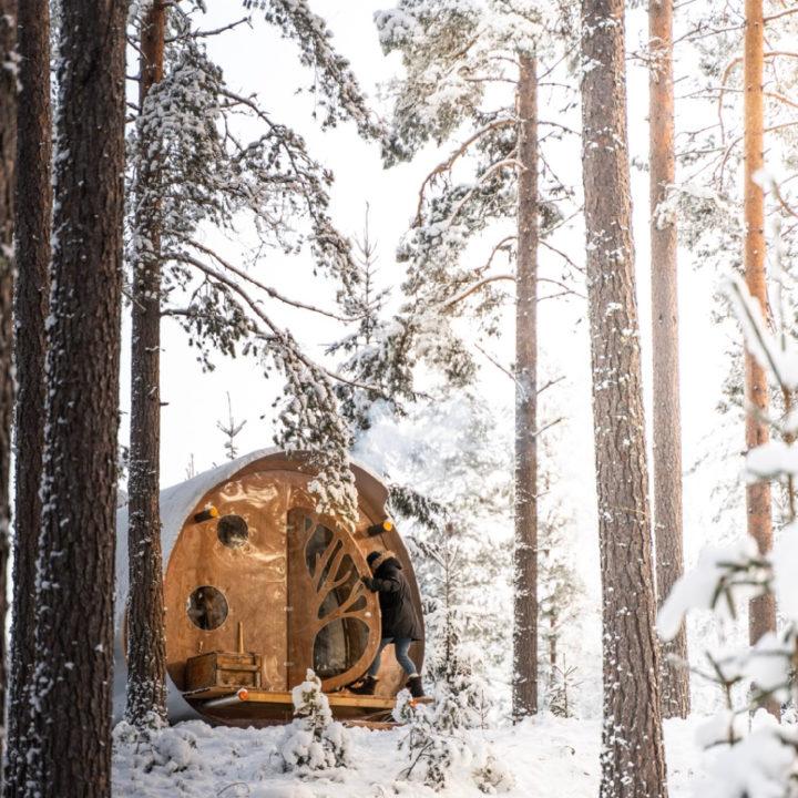 Boomhut in een sneeuwlandschap