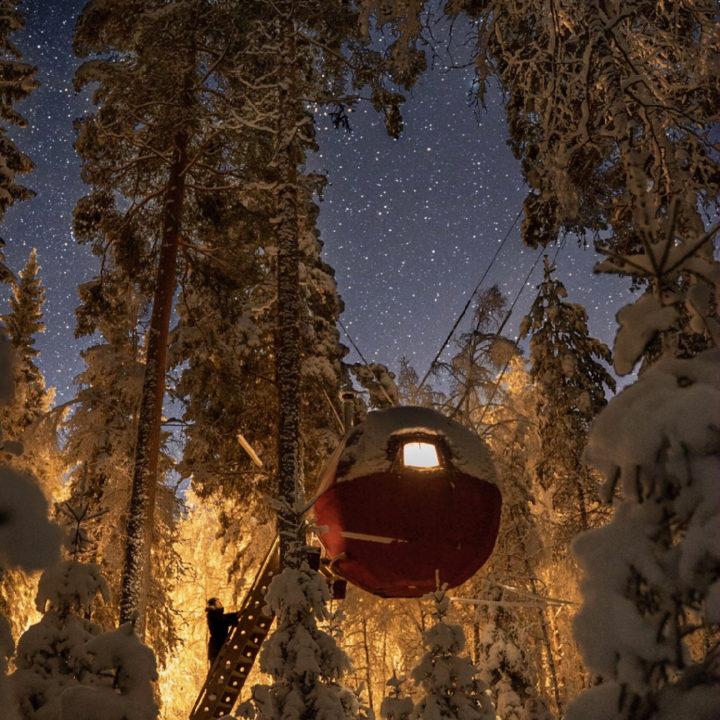 Bijzondere ronde boomhut in de nacht