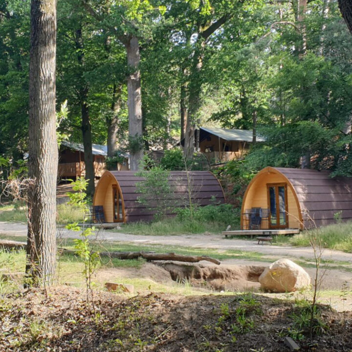Pods en safaritenten, glamping in het bos op de Veluwe