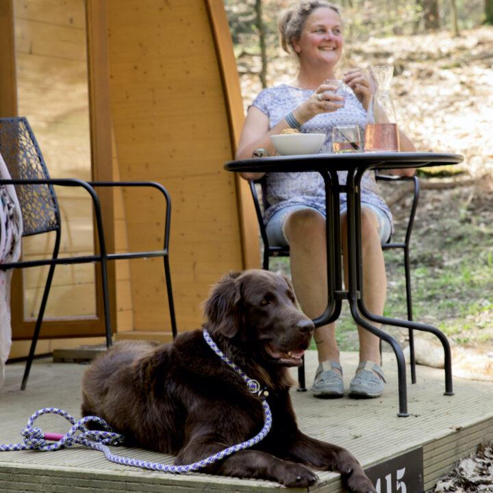 Terras voor de luxe pod op de Veluwe waar ook honden welkom zijn
