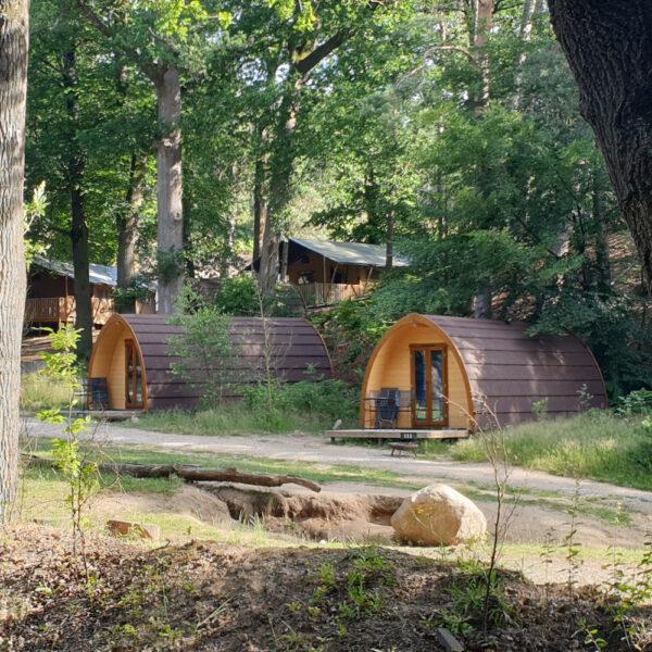 Pods en safaritenten in het bos glamping aan de Veluwe