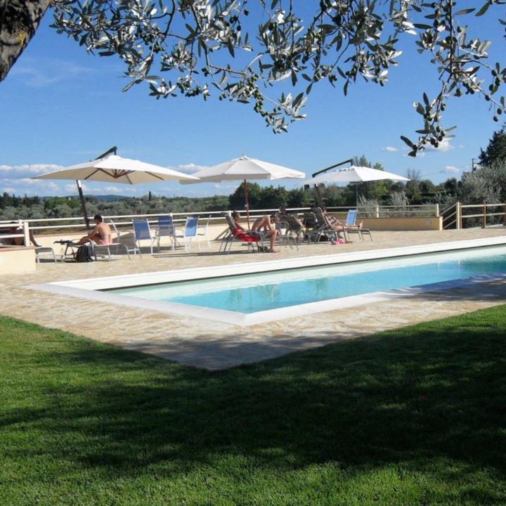 Zwembad met olijfbomen en witte parasols