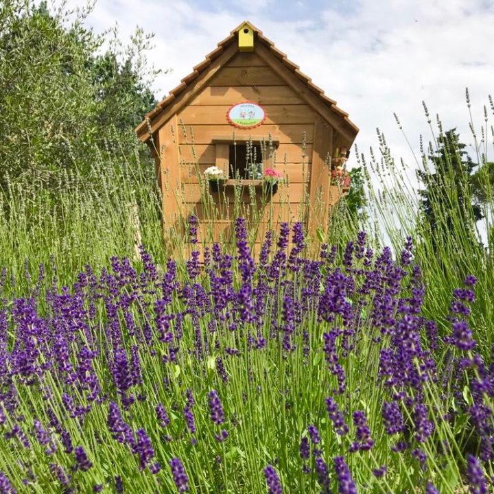 Houten speelhuisje met paarse lavendel op de voorgrond