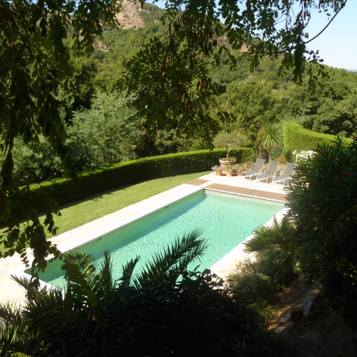 Zwembad tussen de bomen