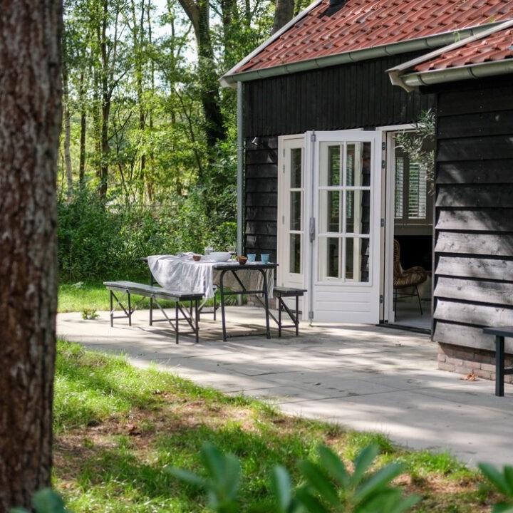 Terras met openslaande tuindeuren van Boshuis Friesche Duin.