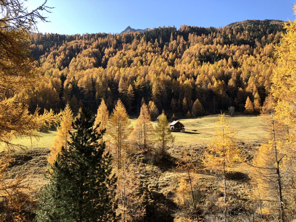 Herfstkleuren in een dal