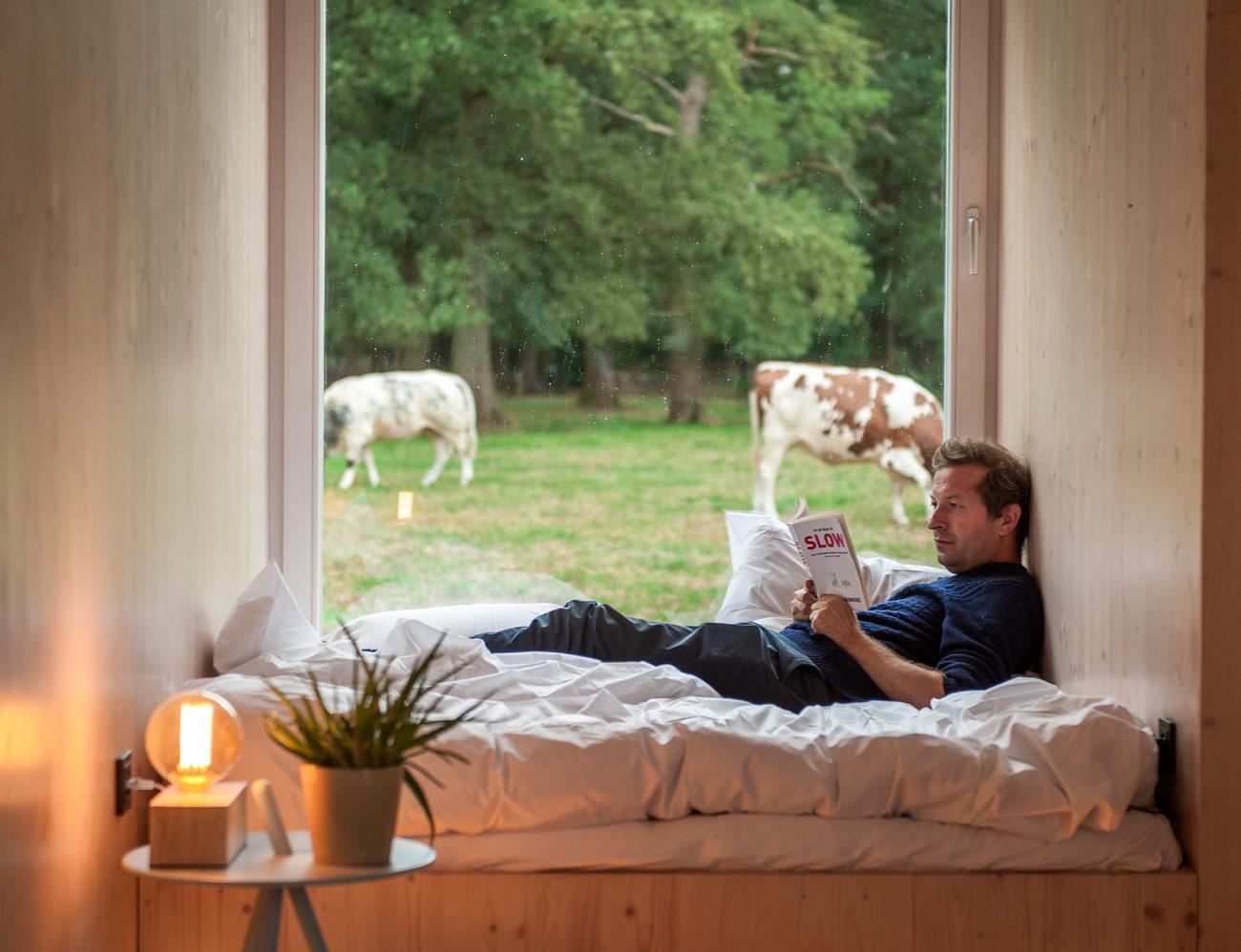 Tweepersoonsbed voor raam met zicht op koeien. Man op bed leest boek