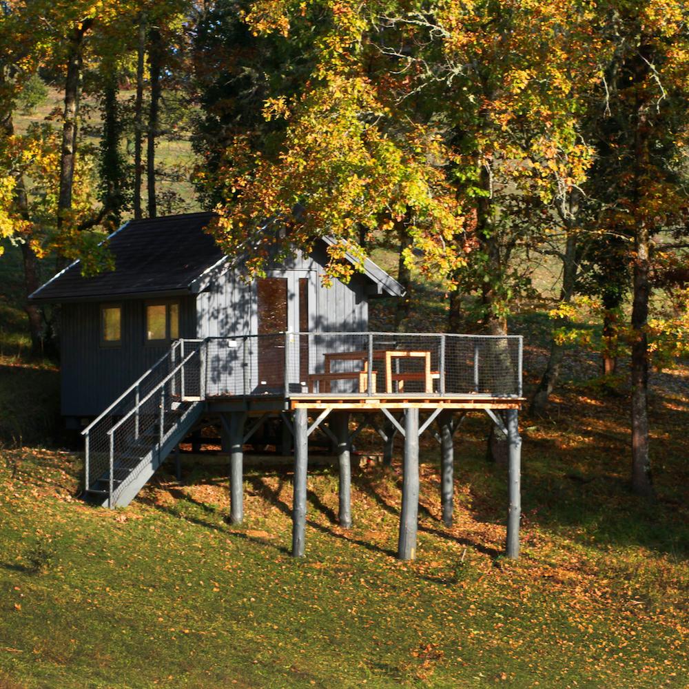 Boomhut in de herfst