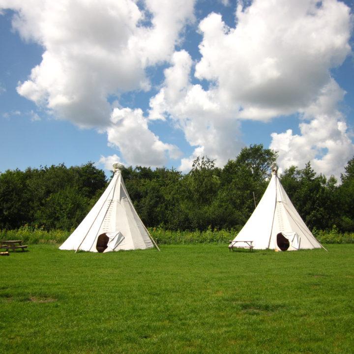 2 tipi's op de camping met een Hollandse wolkenlucht