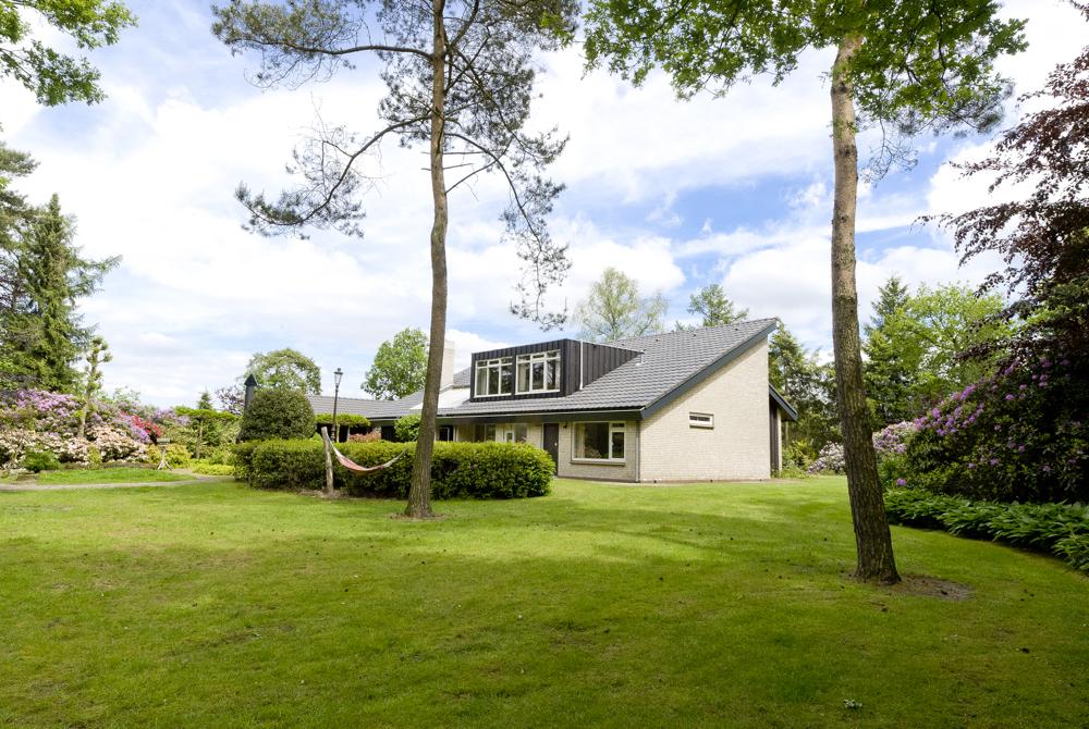 Grasveld met huis met 2 bomen en blauwe lucht met wolken