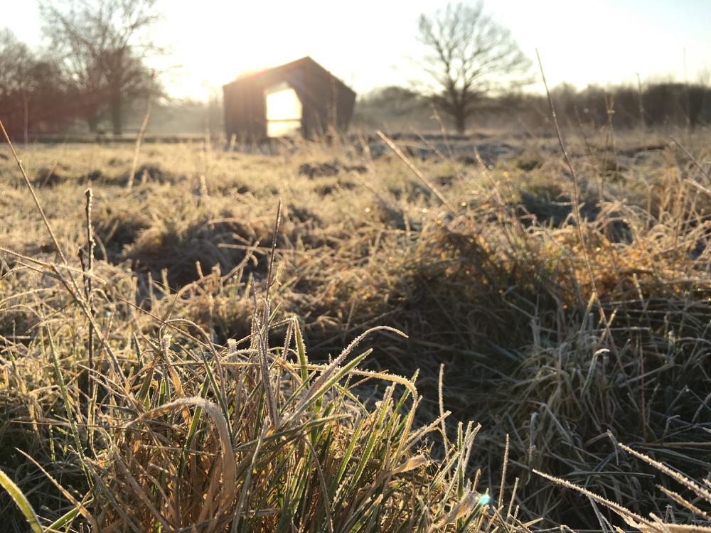 Een luxe trekkershut in de ochtendzon, met dauw in het gras.