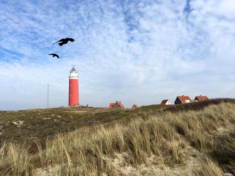 Een must see vanuit je vakantiehuisje op Texel: de rode vuurtoren in de duinen.