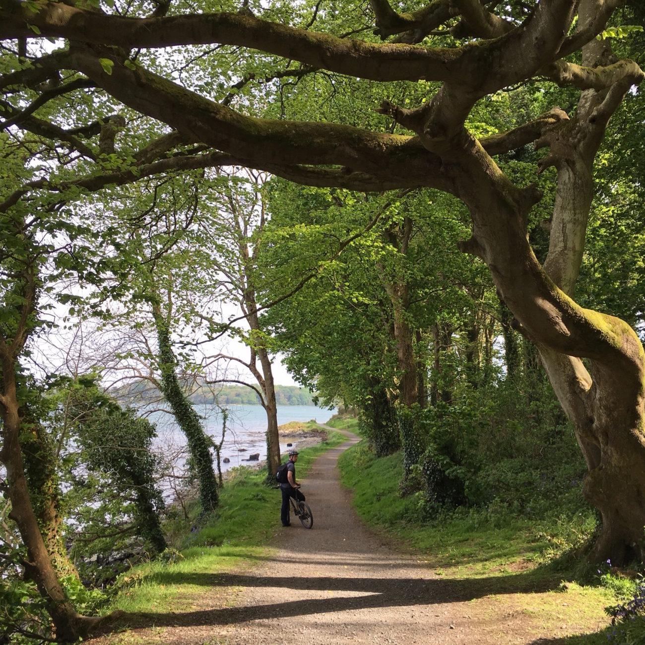 Een van de filmlocaties van Game of Thrones, een fietser onder de bomen op een pad langs een meer
