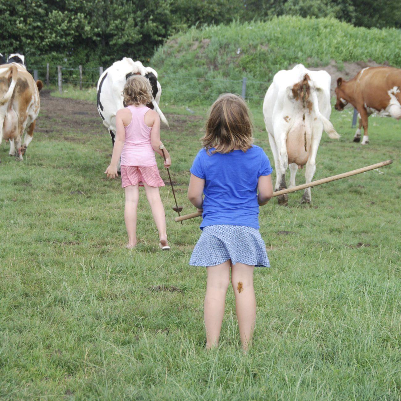 Twee meisjes halen koeien uit de wei, een toffe activiteit