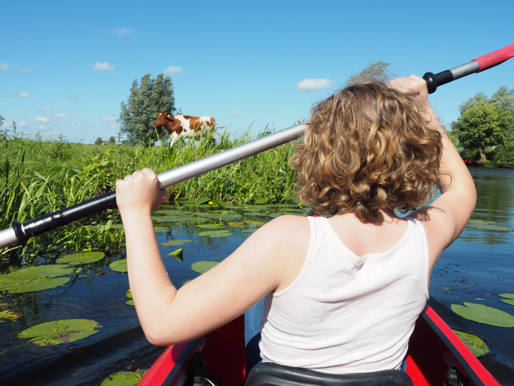 Een meisje met blonde krullen in een wit hemdje in een rode kano tussen de waterlelies. Een bonte koe kijkt toe.