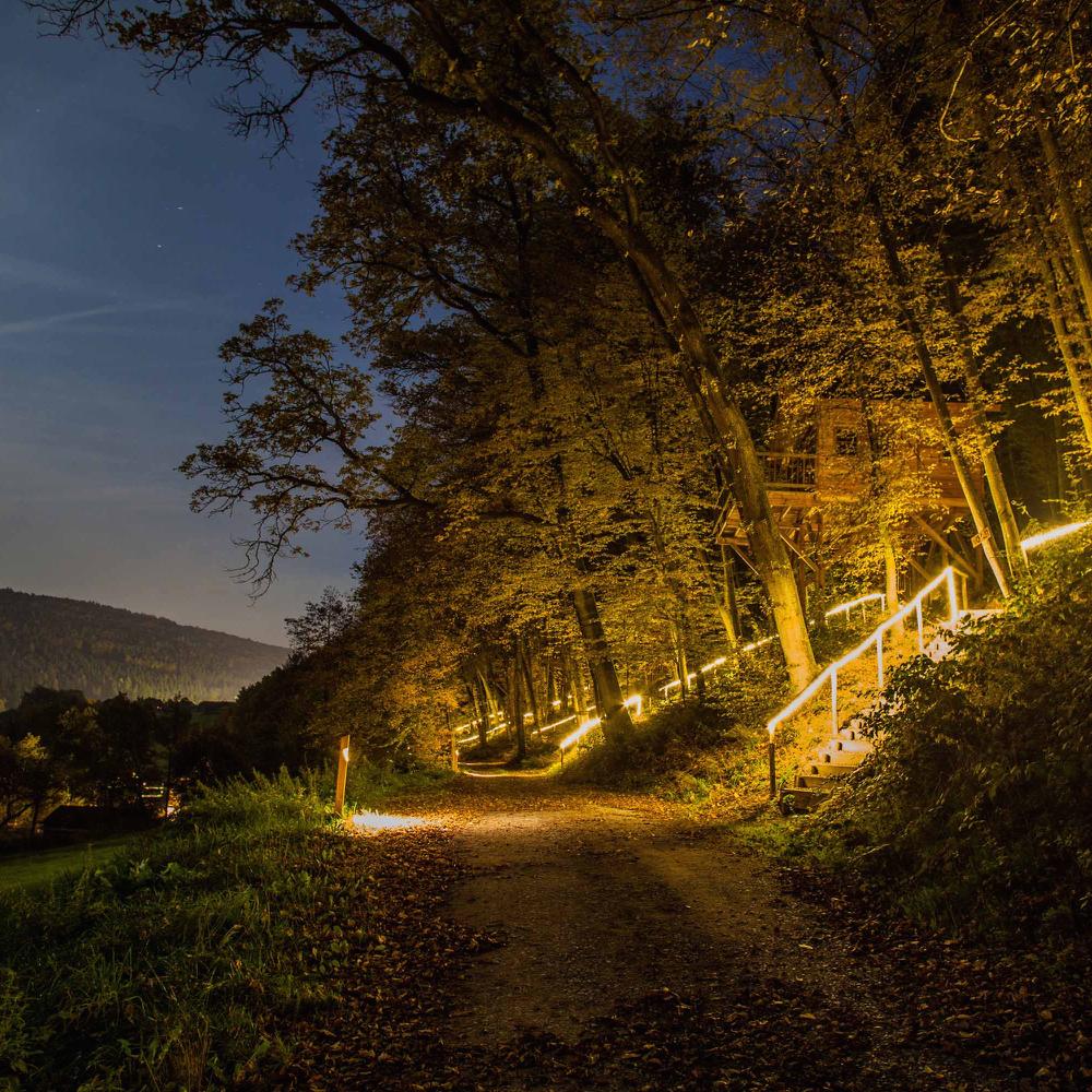 Romantisch weekendje weg in een boomhut, by night.