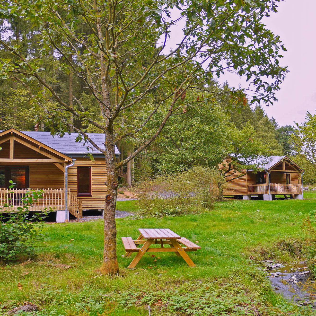 Houten vakantiehuisjes in het gras, met een picknicktafel en bos op de achtergrond.