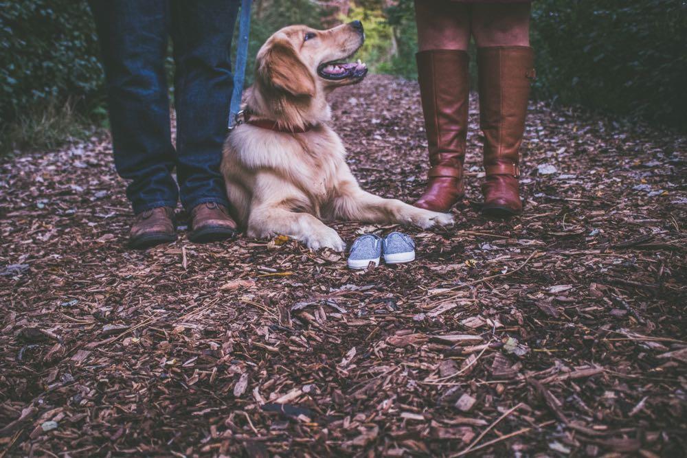Een hond in het bos, met aan weerszijden de onderbenen van zijn baasjes.