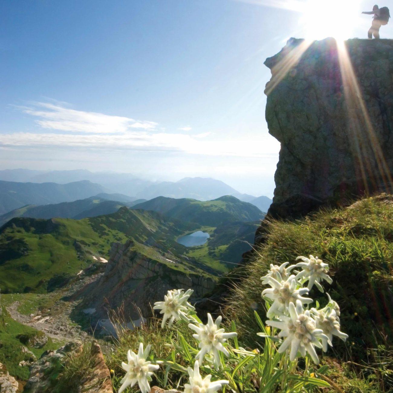 Een bergbeklimmer op de rand van de hoogste berg
