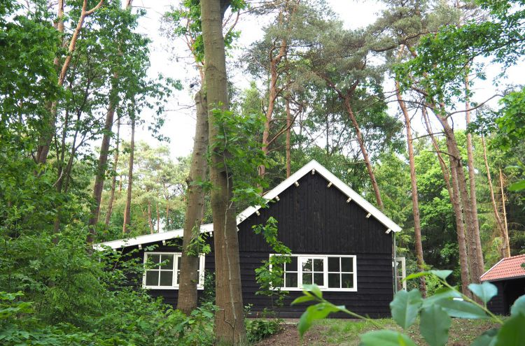 Een van de bijzondere vakantiewoningen op Bijzonder Plekje: het Scandinavisch uitziende Boshuis Nij Hildenberg.