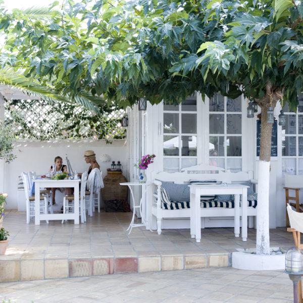Witte stoelen en tafeltjes op een terras onder een grote boom