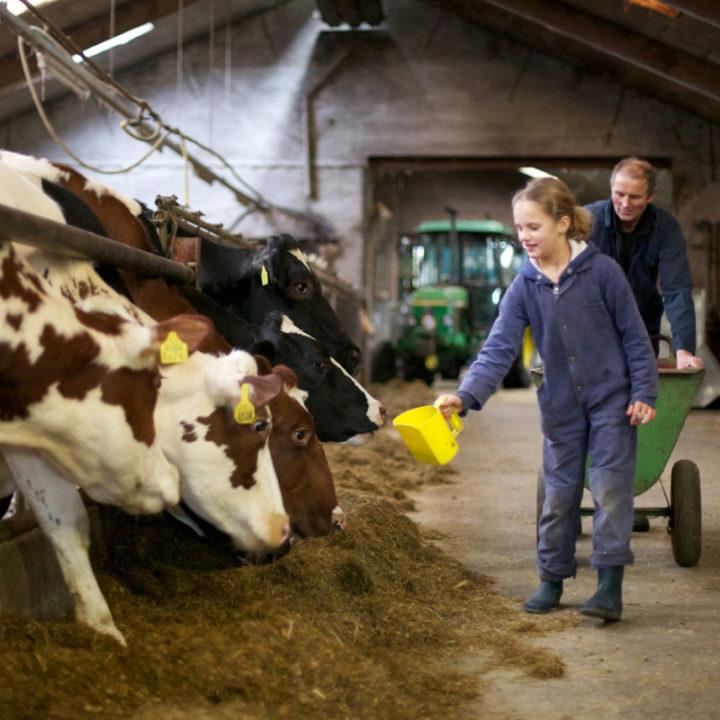 Je bent van harte welkom om boer Frans en boerin Truus te helpen op de boerderij.