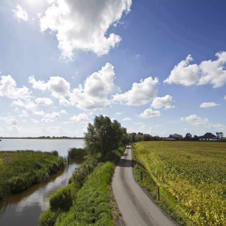 Midden in het uitgestrekte polderlandschap ligt de Pollepleats.