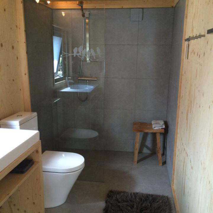 De nieuwe, moderne badkamer.