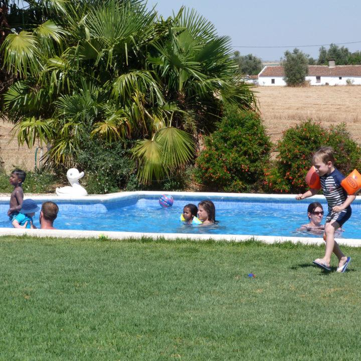 Dikke pret met elkaar in het zwembad.